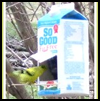 Bird   Feeder with Milk or Juice Box
