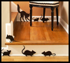 Rat   Race    : Scary Black Cats Crafts Activities
