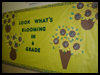 Look   What's Blooming in 6th Grade   : School Bulletin Board Decorating Ideas for Teachers