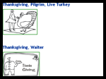 Thanksgivingfun.net : Thanksgiving Coloring Pages
