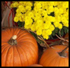 Floral