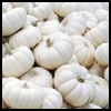 Elegant   White Miniature Pumpkins   : Crafts Ideas for Kids to Decorate Thanksgiving Tables
