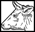 How to Draw Cow Faces