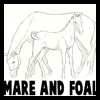 How to Draw Mare and Foal