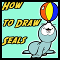 How to Draw Cartoon Seals