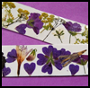 Pressed    Flower Bookmarks  : How to Make Crafts with Real Flowers