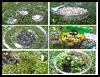 Make a Terrarium by Amy the interns : Making Terrariums Instsructions for Children