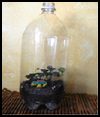 Build   Your Own Dagobah Terrariums  : How to Make Terrariums for Kids