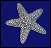 Sparkling Starfish Arts and Crafts Project for Children