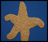 Kids Starfish Craft for Kids