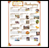Thanksgiving-Quizzes  : Free Thanksgiving Printable Worksheets