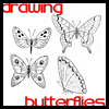 How to draw a beautiful butterfly with simple instructions