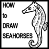 How to Draw Seahorses with easy steps