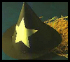Make   a witch hat for this Halloween