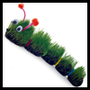 The   Very Hairy Caterpillar