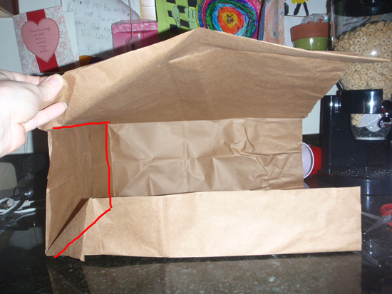 Secondly cut the bottom out of the bag