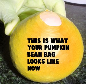 This is what your pumpkin bean bag looks like now