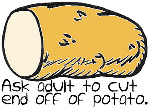 Ask an adult to cut the end off of potato.