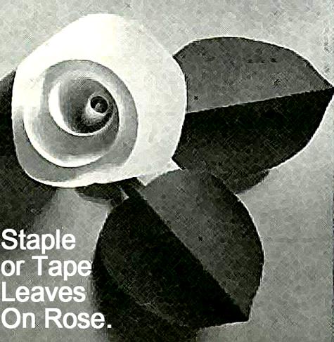 Staple or tape leaves on rose.