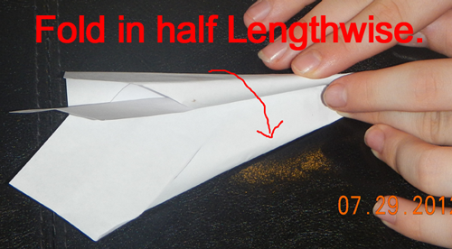Fold in half lengthwise.
