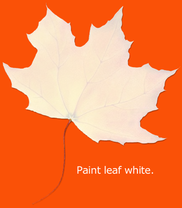 Paint leaf white.