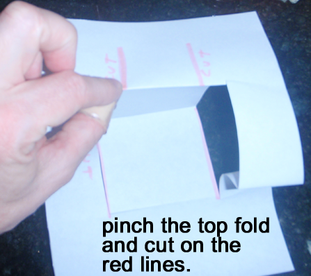 Pinch the top fold and cut on the red lines.